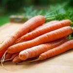 Kiek laiko dygsta morkos